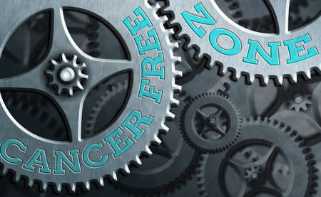 Word writing text Cancer Free Zone. Business photo showcasing supporting cancer patients and raising awareness of cancer System administrator control, gear configuration settings tools concept