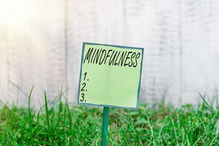 Conceptual hand writing showing Mindfulness. Concept meaning state of mind attained by concentrating one s is attention Plain paper attached to stick and placed in the grassy land