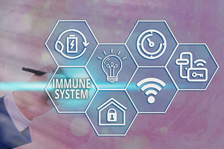 Handwriting text writing Immune System. Conceptual photo a bodily system that protects the body from foreign substances Grids and different set up of the icons latest digital technology concept