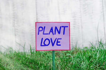 Text sign showing Plant Love. Business photo text a symbol of emotional love, care and support showed to others Plain empty paper attached to a stick and placed in the green grassy land Reklamní fotografie