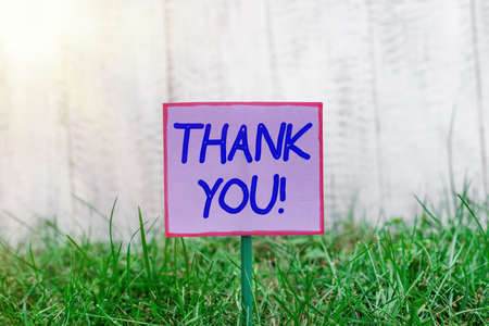 Text sign showing Thank You. Business photo text polite expression to acknowledge a gift, service or compliment Plain empty paper attached to a stick and placed in the green grassy land