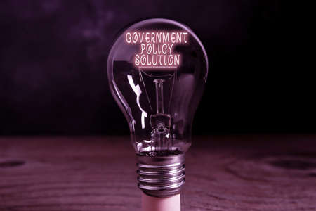 Conceptual hand writing showing Government Policy Solution. Concept meaning designed game plan created in response to emergency disaster Realistic colored vintage light bulbs, idea sign solution