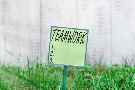 Conceptual hand writing showing Teamwork. Concept meaning the group s is collaborative effort to accomplish a common goal Plain paper attached to stick and placed in the grassy land