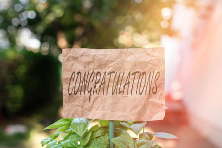 Word writing text Congratulations. Business photo showcasing a special occasion that expressing gratitude or good wishes Plain empty paper attached to a stick and placed in the green leafy plants