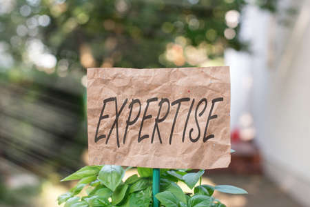 Word writing text Expertise. Business photo showcasing specific competences of skills gained through training practice Plain empty paper attached to a stick and placed in the green leafy plants