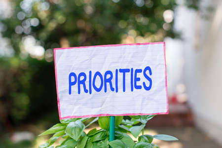 Conceptual hand writing showing Priorities. Concept meaning more important is the fact or state of being viewed or handled Plain paper attached to stick and placed in the grassy land