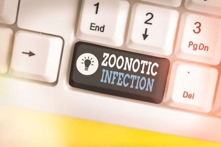 Text sign showing Zoonotic Infection. Business photo text communicable disease transmitted by a non viral agent Different colored keyboard key with accessories arranged on empty copy space