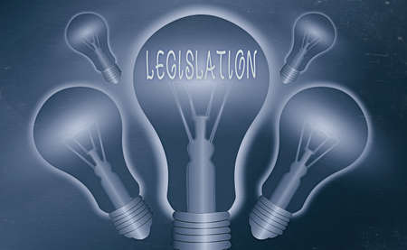Conceptual hand writing showing Legislation. Concept meaning a law proposed by a government and made legal by a parliament Realistic colored vintage light bulbs, idea sign solution