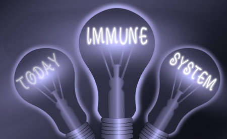 Text sign showing Immune System. Business photo text a bodily system that protects the body from foreign substances Realistic colored vintage light bulbs, idea sign solution thinking concept