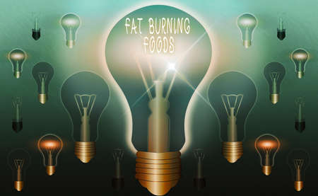 Text sign showing Fat Burning Foods. Business photo text produce fat loss by stimulating metabolism to reduce appetite Realistic colored vintage light bulbs, idea sign solution thinking concept