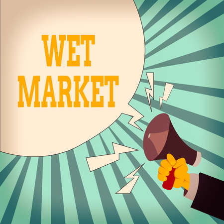 Writing note showing Wet Market. Business concept for market selling fresh meat fish produce and other perishable goods Male Hu analysis Hand Holding Megaphone Blank Speech Bubble