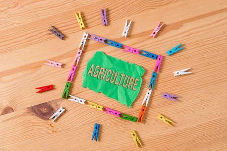 Conceptual hand writing showing Agriculture. Concept meaning practice cultivating the soil, producing crop, raising livestock Colored crumpled papers wooden floor background clothespin