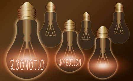 Writing note showing Zoonotic Infection. Business concept for communicable disease transmitted by a non viral agent Realistic colored vintage light bulbs, idea sign solution Banco de Imagens