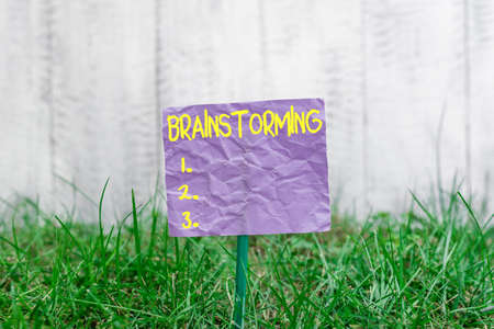 Conceptual hand writing showing Brainstorming. Concept meaning solving technique that involves spontaneous contribution Plain paper attached to stick and placed in the grassy land