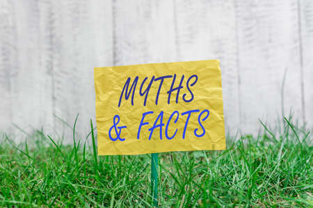 Word writing text Myths And Facts. Business photo showcasing usually traditional story of ostensibly historical events Plain empty paper attached to a stick and placed in the green grassy land