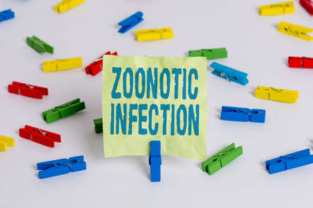 Writing note showing Zoonotic Infection. Business concept for communicable disease transmitted by a non viral agent Colored clothespin papers empty reminder white floor background office