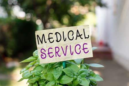 Word writing text Medical Service. Business photo showcasing care and treatment provided by a licensed medical provider Plain empty paper attached to a stick and placed in the green leafy plants