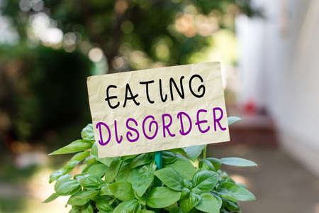 Word writing text Eating Disorder. Business photo showcasing illnesses or severe disturbances in their eating behaviors Plain empty paper attached to a stick and placed in the green leafy plants 免版税图像