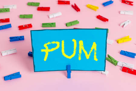 Text sign showing Pum. Business photo showcasing unwanted change that can be performed by legitimate applications Colored clothespin papers empty reminder pink floor background office pin