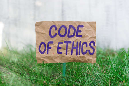 Word writing text Code Of Ethics. Business photo showcasing basic guide for professional conduct and imposes duties Crumpled paper attached to a stick and placed in the green grassy land