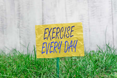 Word writing text Exercise Every Day. Business photo showcasing move body energetically in order to get fit and healthy Plain empty paper attached to a stick and placed in the green grassy land