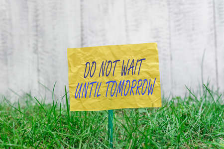 Word writing text Do Not Wait Until Tomorrow. Business photo showcasing needed to do it right away Urgent Better do now Plain empty paper attached to a stick and placed in the green grassy land Foto de archivo