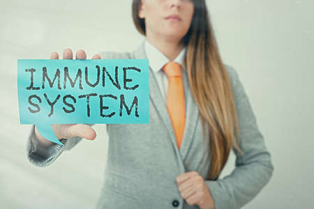 Conceptual hand writing showing Immune System. Concept meaning a bodily system that protects the body from foreign substances Displaying different color notes for emphasizing content