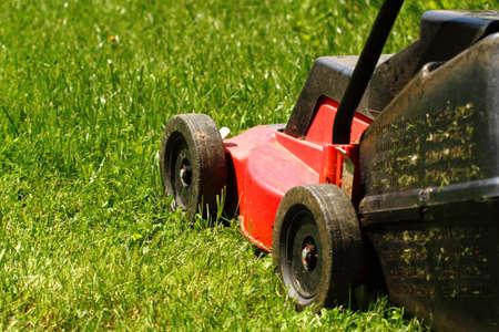 gras maaien: Detail van grasmaaier op groen gras in zonnige dag