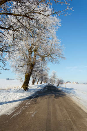 Winter road on a sunny frosty day with blue sky photo
