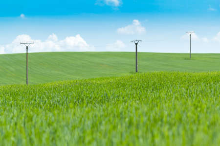 greeen: high voltage power lines in greeen field against a blue sky  Stock Photo