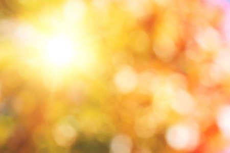 太陽の背景や背景と紅葉の自然なボケ味 写真素材