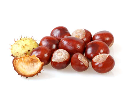 group of chestnut with crust on a white background Stock Photo - 15695511
