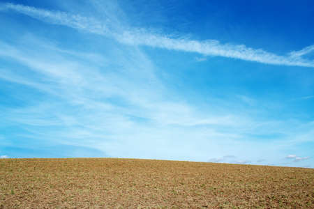 horizont: Nice autumn field with clear horizont and blue sky