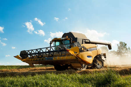framer: Yellov combine on field harvesting wheat in sunny weather Stock Photo
