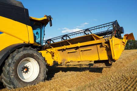 yellov: Yellov combine on field harvesting wheat in sunny weather Stock Photo