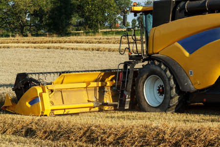 Yellov combine on field harvesting wheat in sunny weather photo