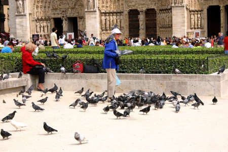 essentially: PARIS - May 7: Notre Dame Cathedral on May, 2009 in Paris. Unknown man with pigeons in front of the cathedral was essentially completed by 1345 and is very popular travel destination in France Editorial