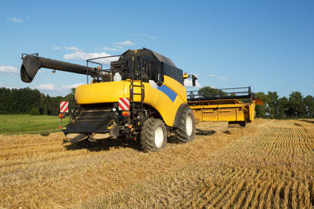 framer: Yellow harvester combine on field harvesting wheat in sunny weather