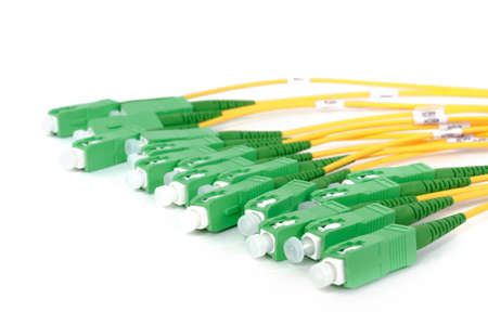 fiber optic: green fiber optic SC connectors on white background