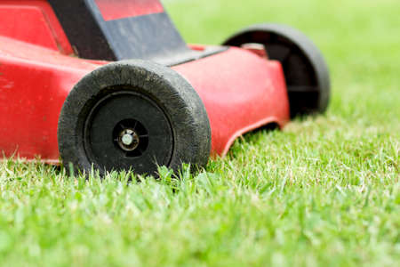 Detail of lawnmower on green grass in sunny day Stock Photo