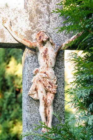 Crucifixion, Jesus Christ on the cross. Trees growing around cross.