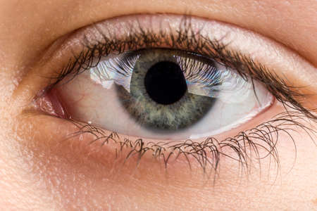 brown eye: Beautiful young teenager health brown eye macro