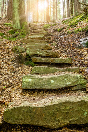 Stone staircase leading up a walkway through the Doubrava valley, Czech Republic with sun light at up