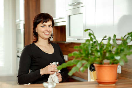median age: happy smiling middle-aged woman wipes the dishes in the kitchen Stock Photo