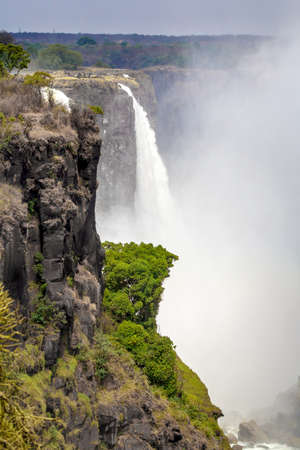 The Victoria falls is the largest curtain of water in the world (1708 meters wide). The falls and the surrounding area is the National Parks  photo