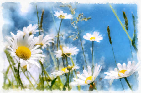 Akvarel vintage effect of spring daisy flower field, watercolor photo