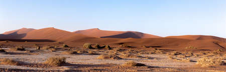 shaddow: wide panorama of beautiful sunrise landscape of hidden Dead Vlei in Namib, blue sky, best place of Namibia