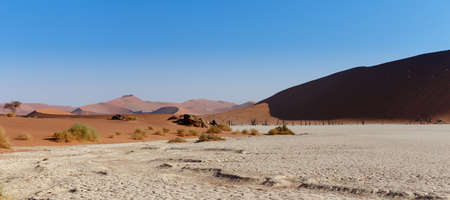 wide panorama of beautiful sunrise landscape of hidden Dead Vlei in Namib, blue sky, best place of Namibia photo