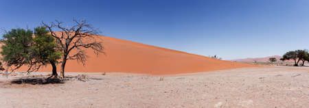 best place: wide panorama of Dune 45 in sossusvlei Namibia, view from the top of a dune, best place in namibia Stock Photo