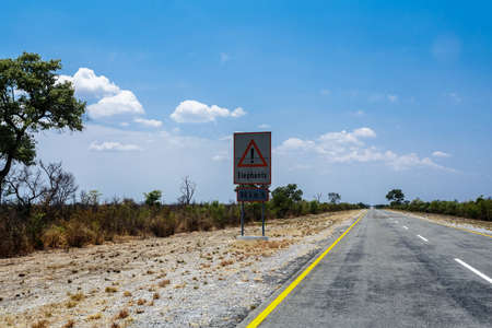 endless road: Endless road with blue sky and sign elephants crossing in Namibia, Caprivi Game Park, with blue sky